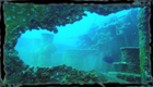 wreck diving with Coral Point at the Atlantic Princess