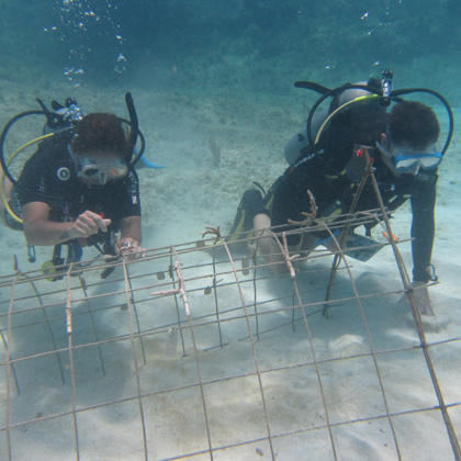 work in scuba diving